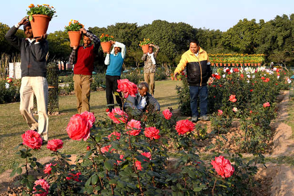 Chandigarhas Rose Festival to be dedicated to CRPF martyrs