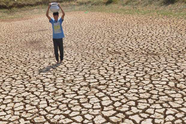 Severe heatwave will sweep northern, central India: IMD