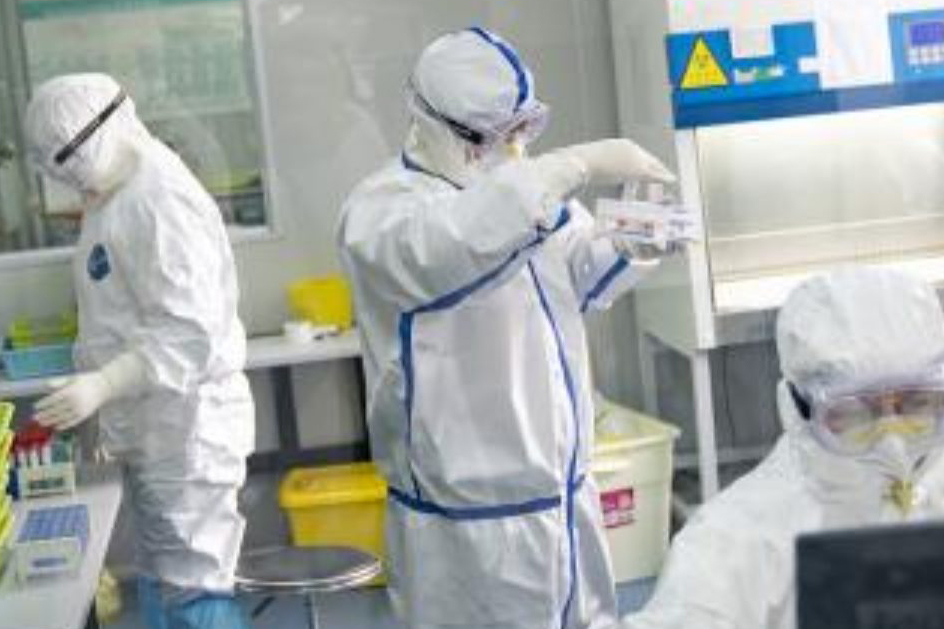3 live coronaviruses in Wuhan lab dont match COVID-19: Report