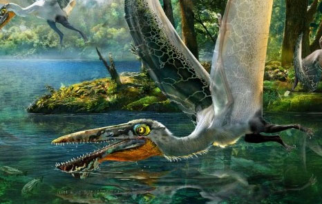 Pterosaur resembling Avatar creature unearthed in China