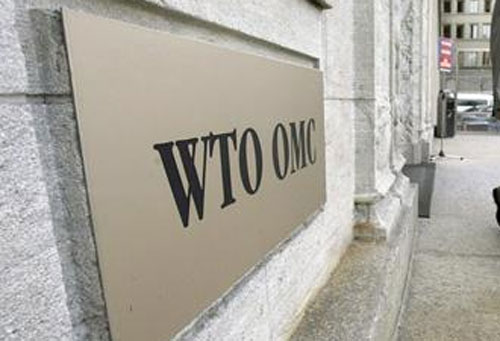Indias stand on WTO puts into doubt its credibility