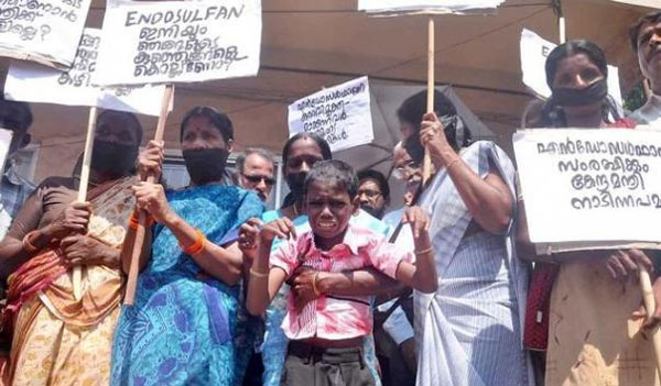 NHRC unhappy over delay in tribunal for endosulfan victims