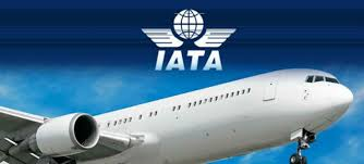 Indias air passenger traffic to double in next 20 years: IATA