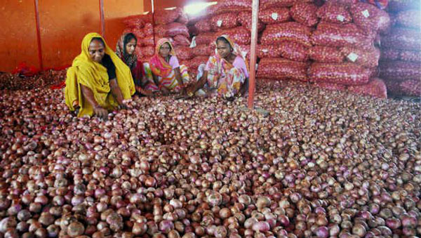 Govt extends ban on hoarding onion beyond ceiling