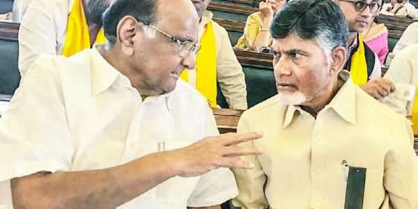 Some more parties will be asked to join Mahagathbandhan: Pawar, Naidu