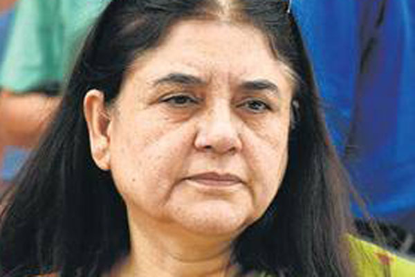 I was misquoted: Maneka Gandhi on her controversial speech at Sultanpur
