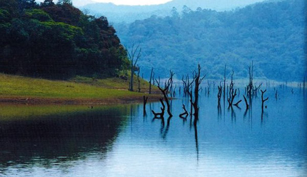 Kerala Tourism receives PATA award for Thekkady
