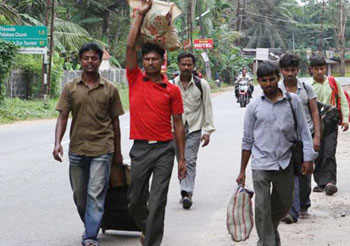 Kerala to set up night shelters for migrant workers