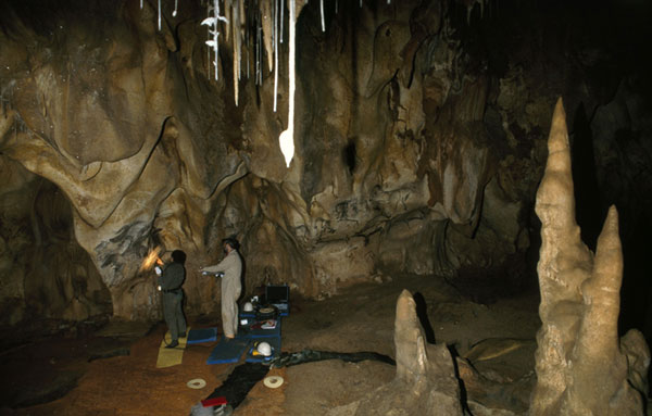 French cave of Chauvet reveals prehistoric rock art