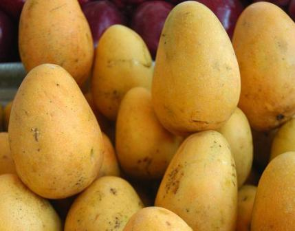 UK to assist India in ensuring lifting of ban on mango import