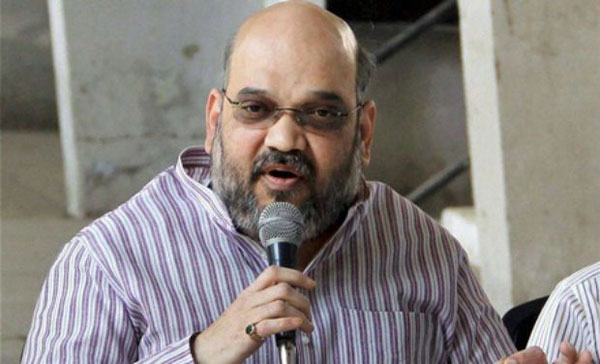 Modi governments record contributed to partys success: Amit Shah