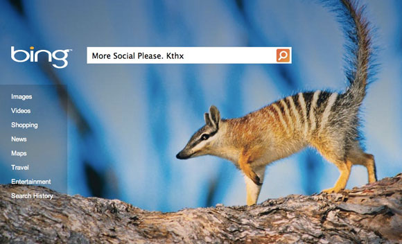 Bing to integrate social networking with search results