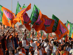 BJP wins Chhattisgarh assembly by-poll