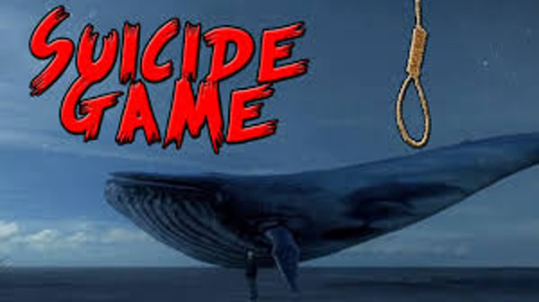 Blue Whale game couldnt be established as child killer: MEA