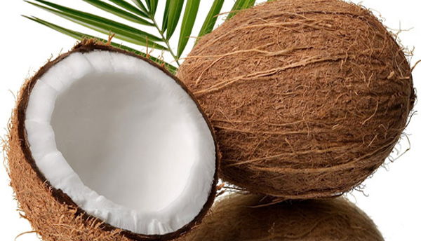 India exports coconut products worth Rs.376 crore in Q1