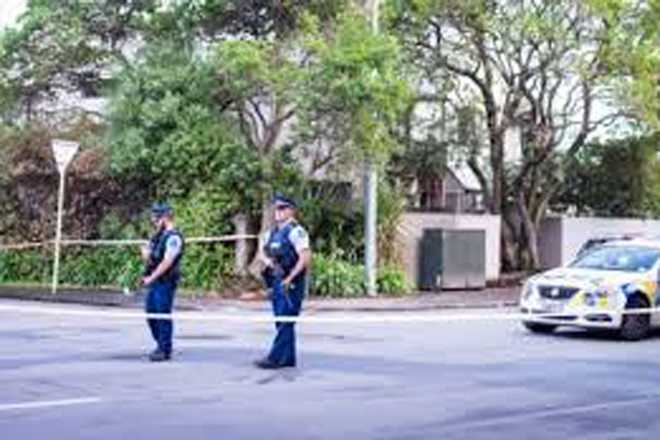 Christchurch was a lone wolf attack: Police