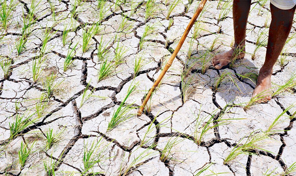 Kerala on the brink of the most severe drought in history