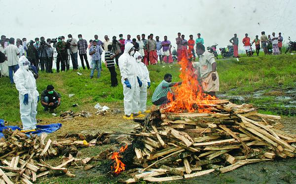 Nearly 2.6 lakh ducks culled; no human found infected