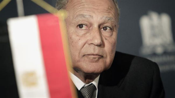 Egypts ex-foreign minister appointed as Arab League chief