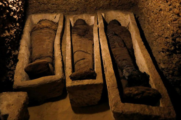 Tomb with 50 mummies found in Egypt