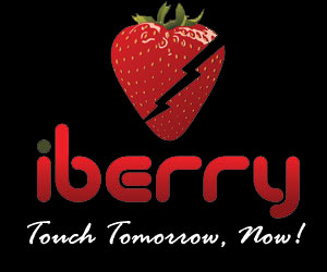 Now a smartphone from iBerry