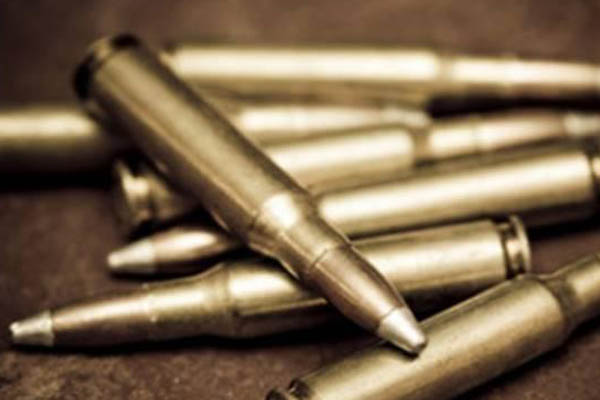 Missing bullet case: probe to be extended to top officials as well