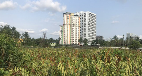 No alternate houses in sight, Maradu flats residents to stay put