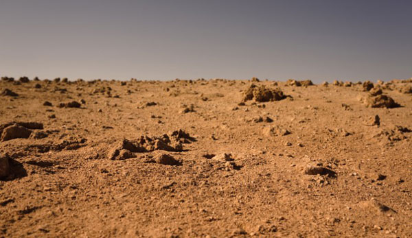 NASA prepares real Martians to land and stand on Red Planet