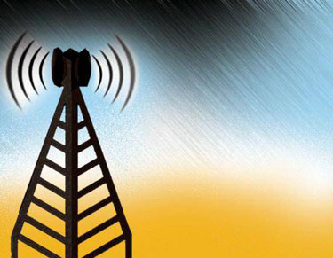 Developing website to show real-time mobile tower radiation: Department of Telecom