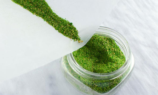 Moss that can remove lead from water identified