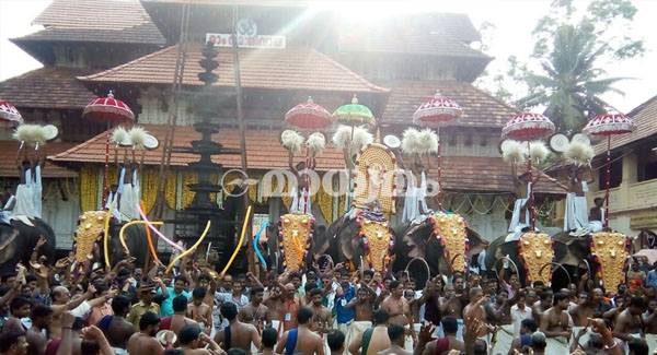 HC says authorities to decide on allowing tusker in Pooram festival