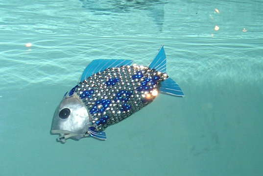 First robotic fish tested