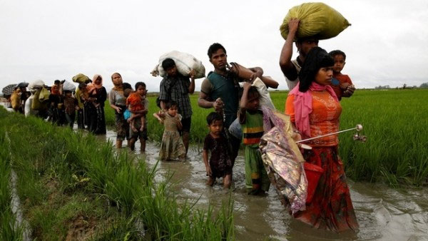 40 per cent of Rohingyas in Myanmar have fled to Bangladesh: UN
