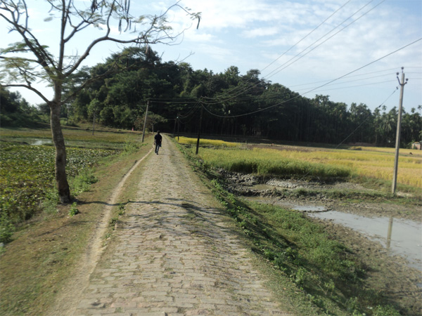 Backward Assam village heading for brighter days