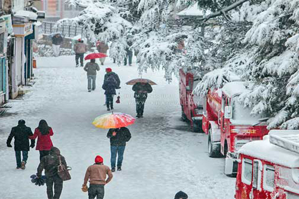 Himachal hills turn white, vehicles movement hampered