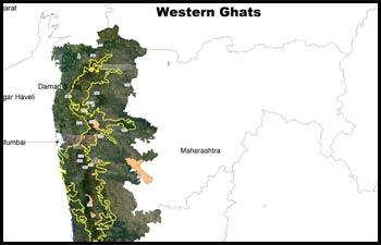No new project in Western Ghats until final notification, orders Green Tribunal
