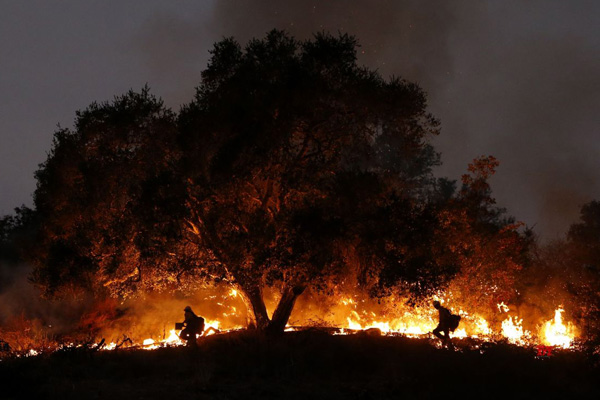 Tweets could be reliable indicator of air quality during wildfires