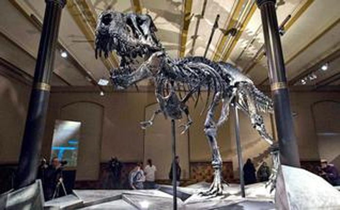 Sulphuric acid clouds caused darkness, cold, killing dinosaurs